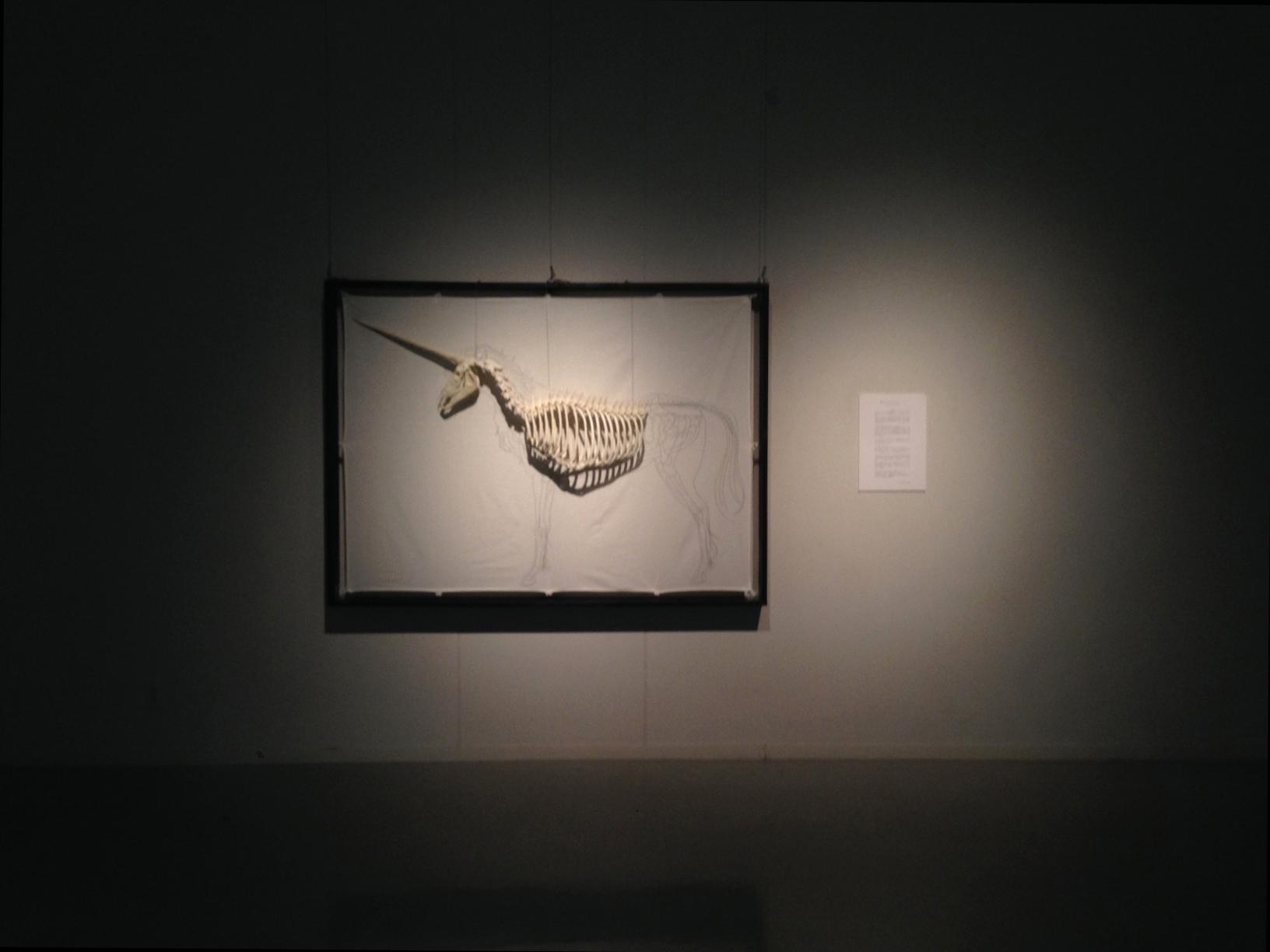 6月第3週  胸骨・肋骨・胸椎 画像1