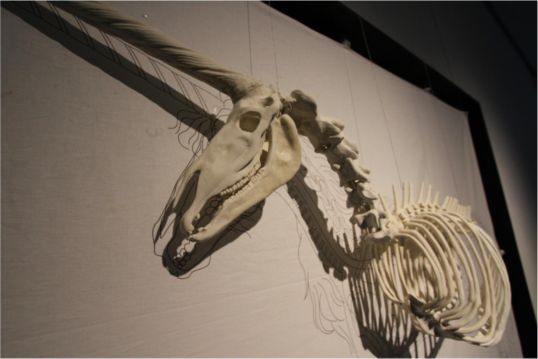 画像: 平野真美 作品 「蘇生するユニコーン」